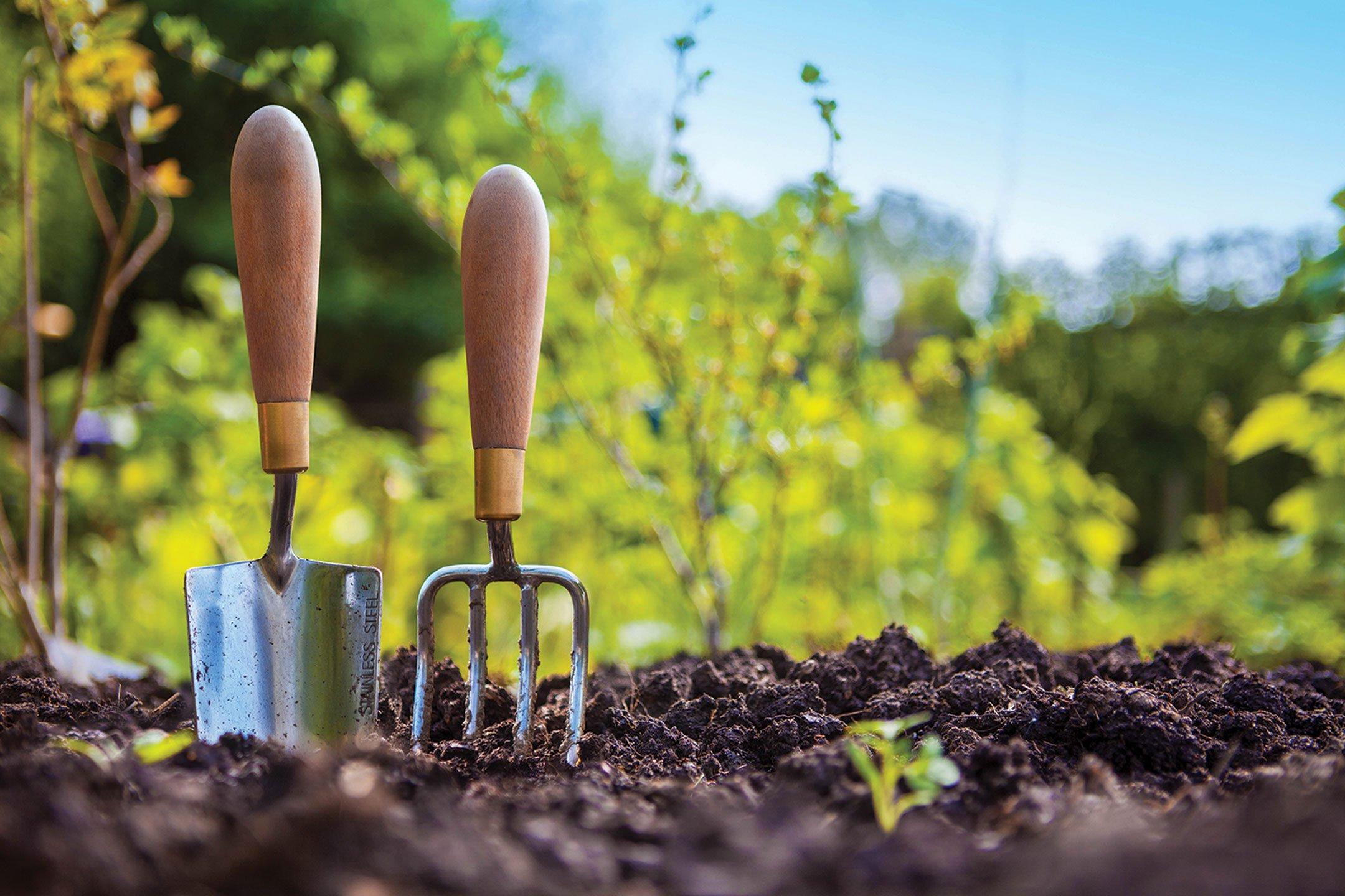 Gardening Tips for May - The Sun-Gazette Newspaper
